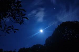 noche tranquila