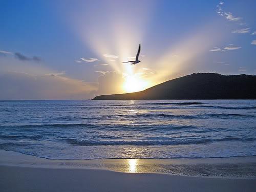 lindo amanecer
