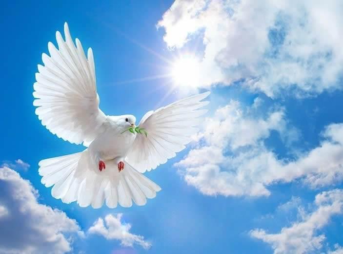 holy-spiritu